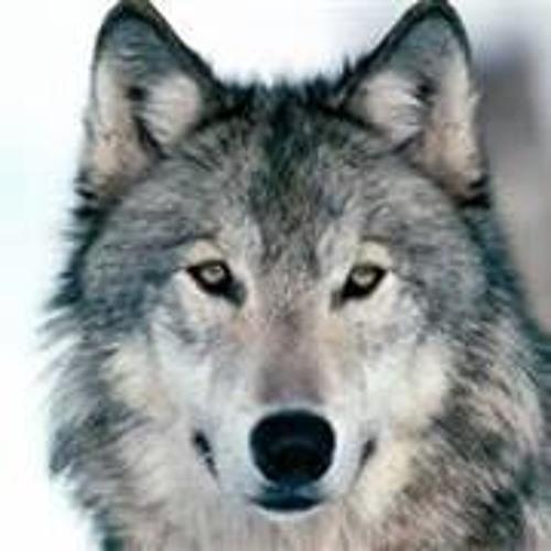Cody101's avatar