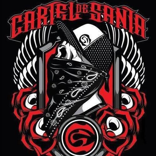 PURO SANTA CARNAL's avatar