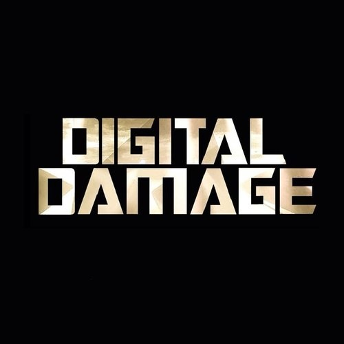 Digital Damage Official's avatar