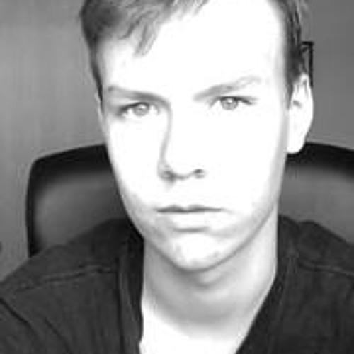 Leo Lejonet Andersson's avatar