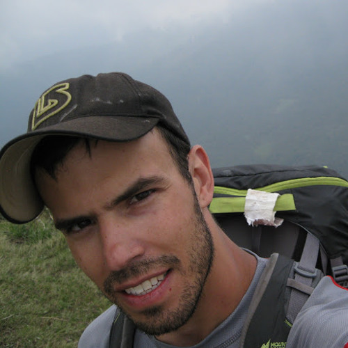 pfs1's avatar