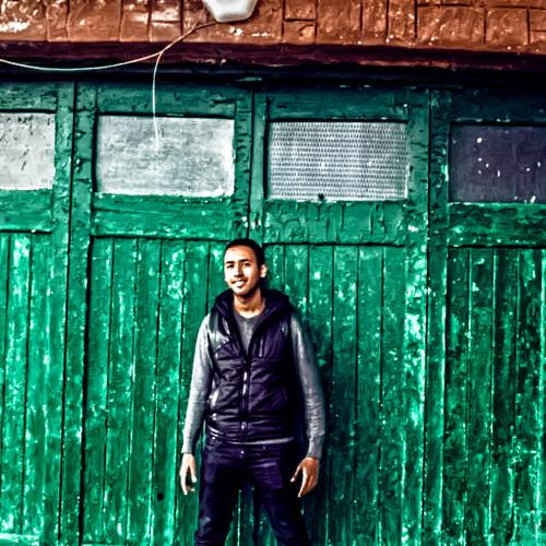 Mostafa Assem 1's avatar