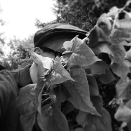 stijn hüwels's avatar