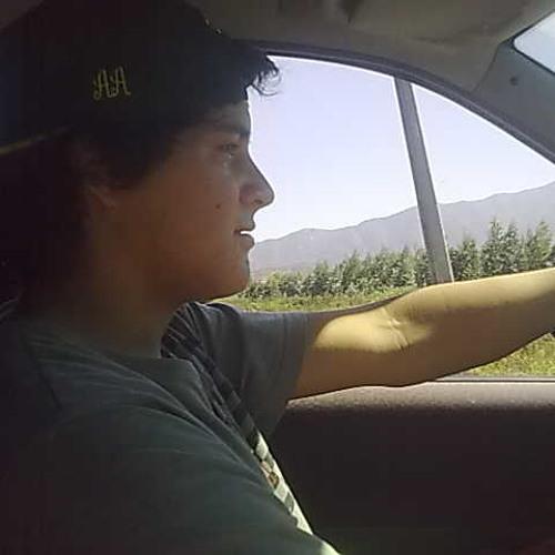 Dylan Gutierrez Ahumada's avatar