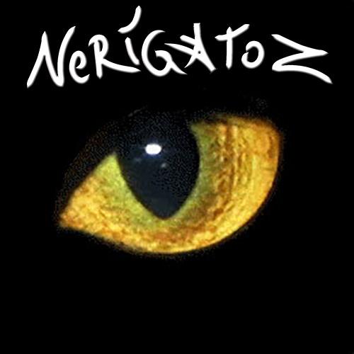 NERIGATOZ's avatar