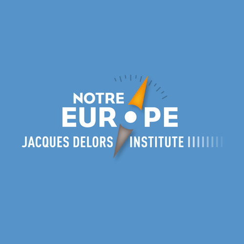 Jacques Delors Institute's avatar