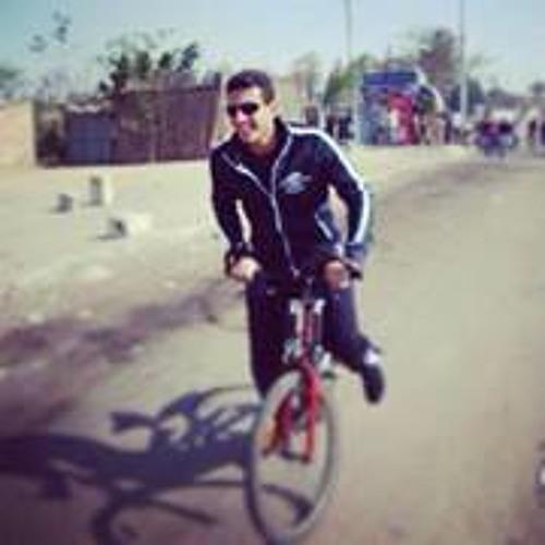 Mahmoud Farouk Moustafa's avatar