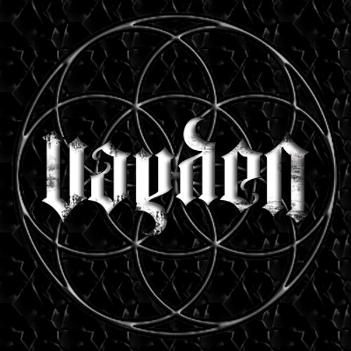 Vayden Music's avatar