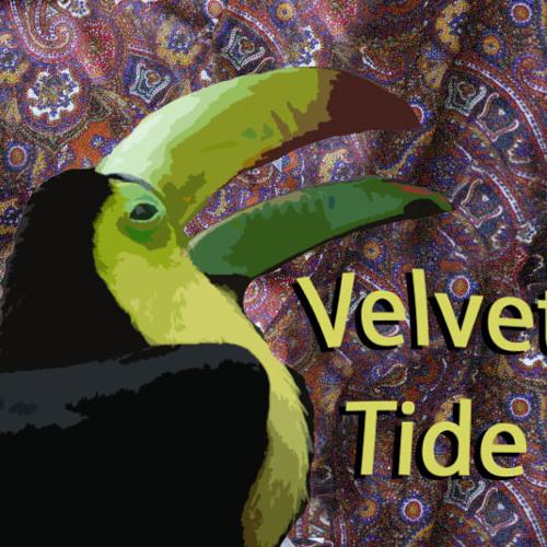 Velvet Tide's avatar