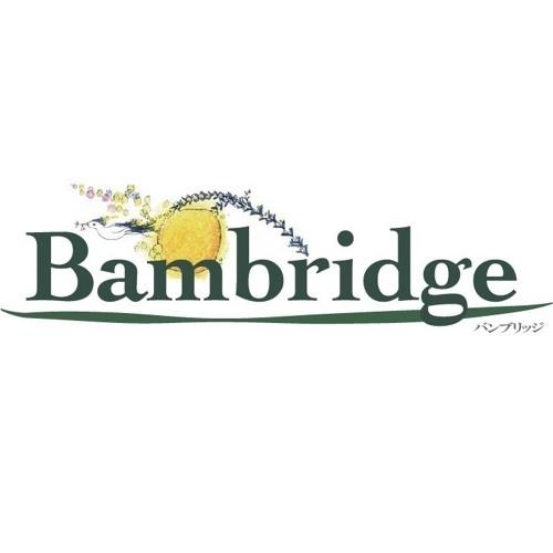 Bambridge's avatar