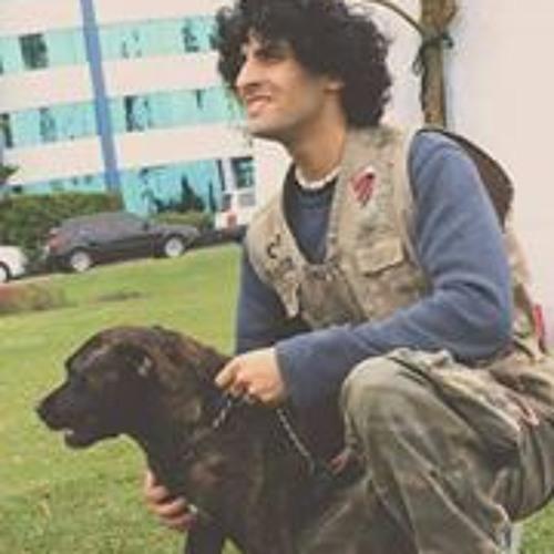 Yamal Farach Prieto's avatar
