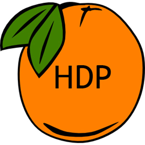 HDP Records's avatar