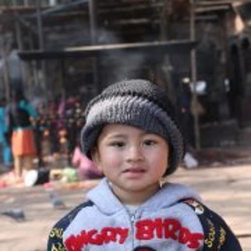Madhur Jagulu Shrestha's avatar