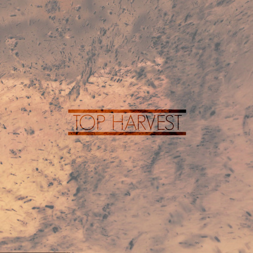 Top Harvest Mixes's avatar