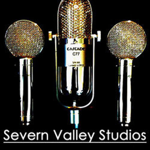 Severn Valley Studios's avatar