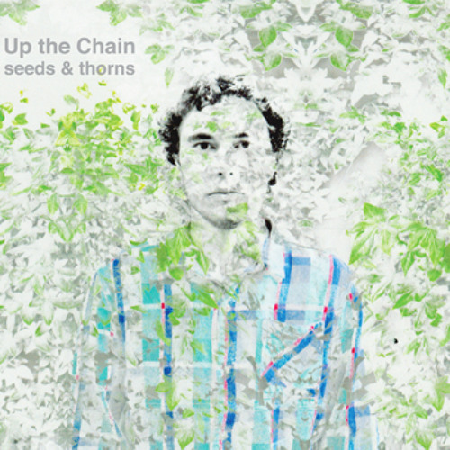 Up the Chain's avatar