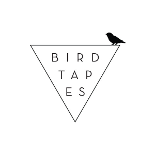 Birdtapes's avatar