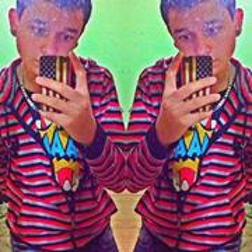 Luan Vinicius 13's avatar