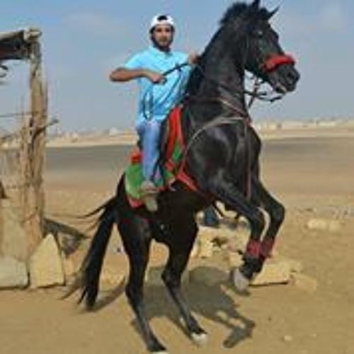 Mostafa Hany El-Gabry's avatar