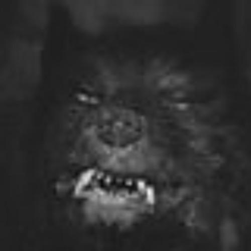 Matt Casciano's avatar