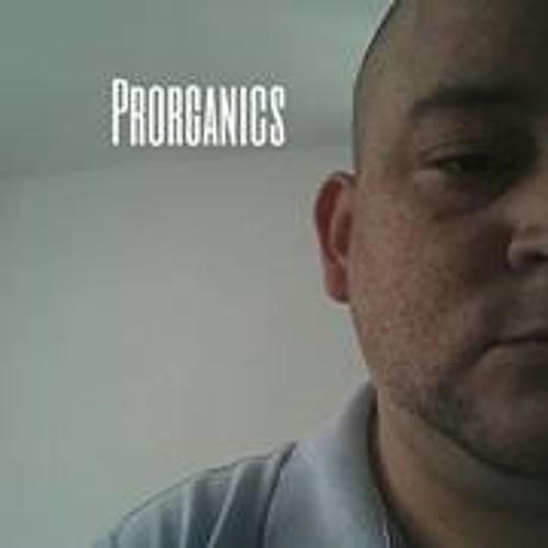 Samuel Vargas 13's avatar