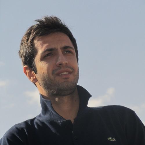 Mohammad Mirzabeigi's avatar