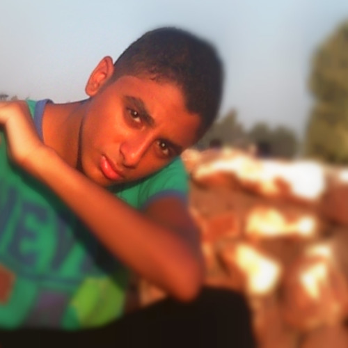 Shehab S. Mohamed's avatar