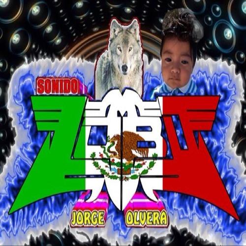sonido lobo's avatar
