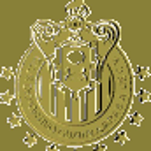 picudo7's avatar