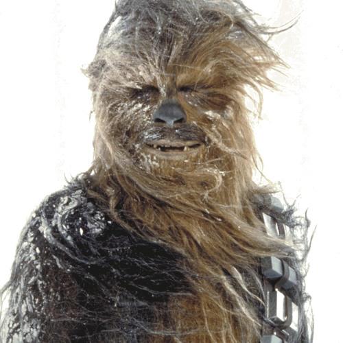 Los Chewbaccas's avatar