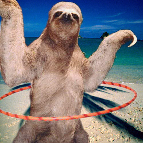 George the Sloth's avatar
