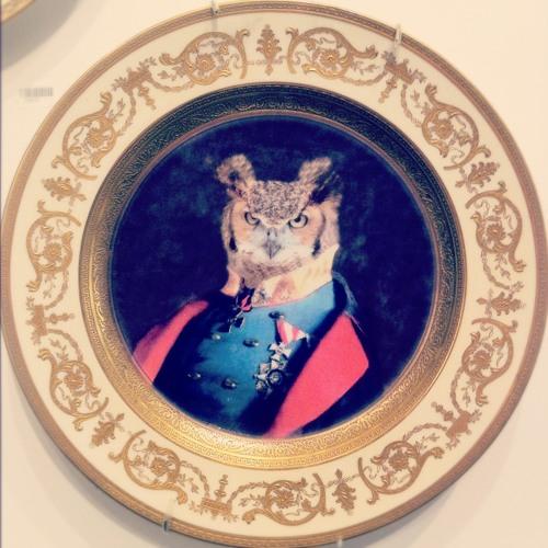Joseph Masellis's avatar