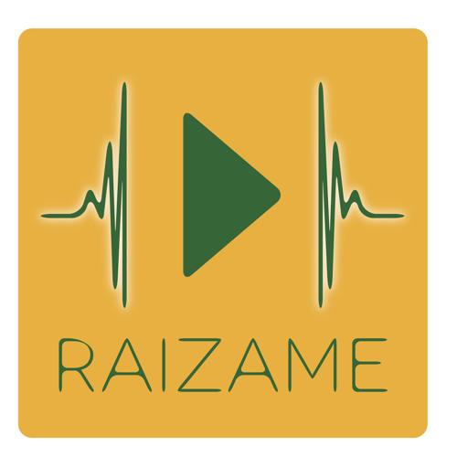 Raizame's avatar