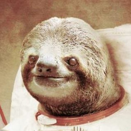 TheRealSloth's avatar