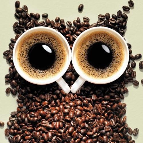 CaffeinatedOwl's avatar
