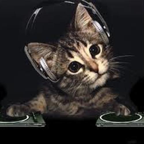 Radio edit's avatar