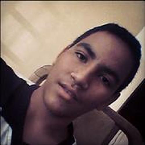 mavlg29's avatar