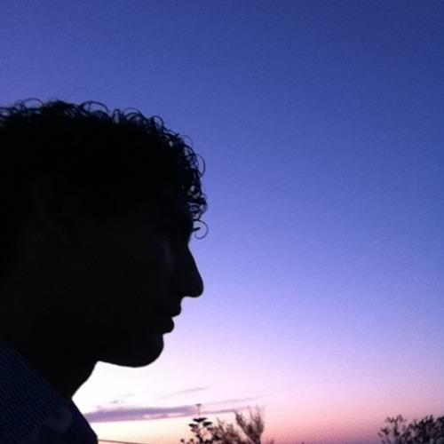 Luciano fraticelli's avatar