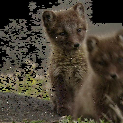 foxtime33233's avatar