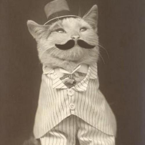 Mat-H's avatar