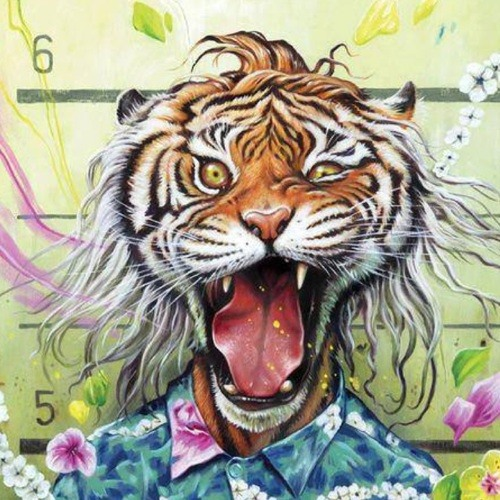 Timmc70's avatar