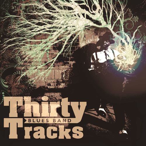 Thirty Tracks Blues Band's avatar
