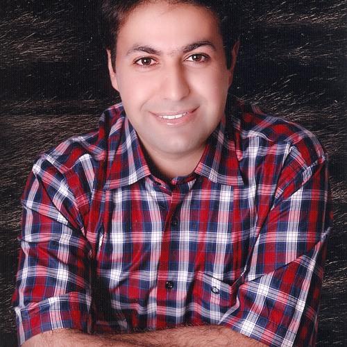 Mohammad Hasheminejad's avatar