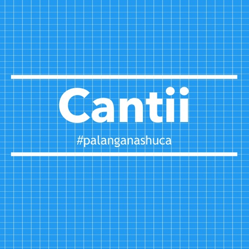 cantii's avatar