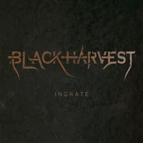 Black Harvest NYC's avatar
