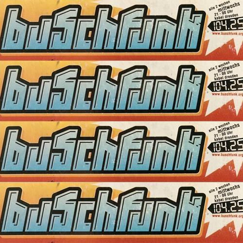 Buschfunk Radioshow's avatar