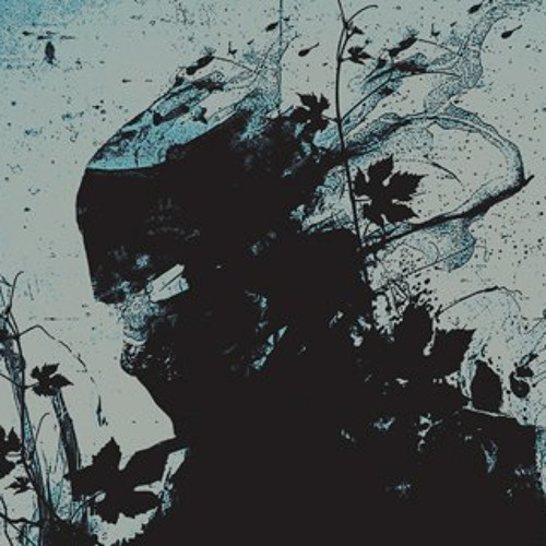 tisane's avatar