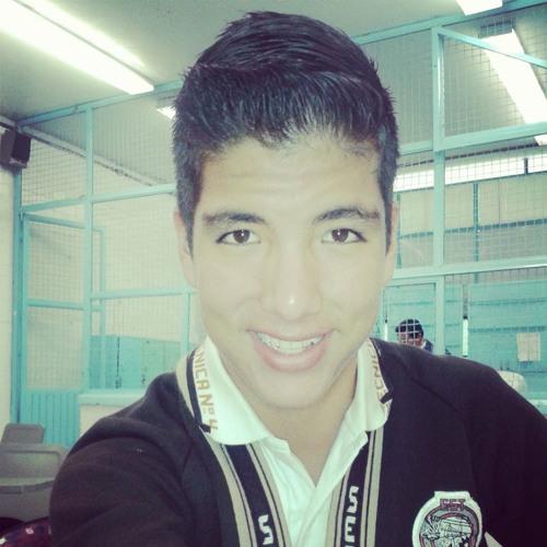 Carlos Flores Quiñones's avatar