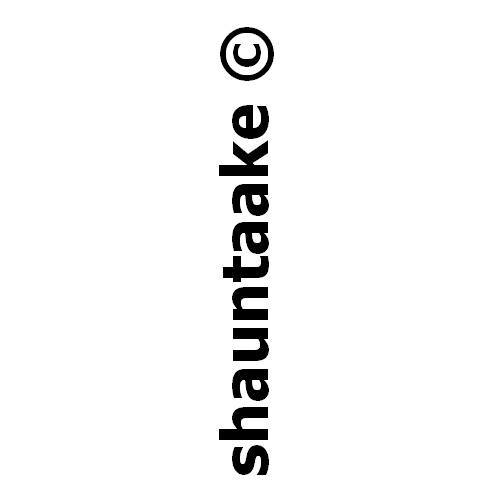 shauntaake's avatar