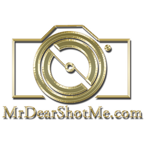MrDearShotMe's avatar